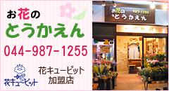お花のとうかえん tel:044-987-1255